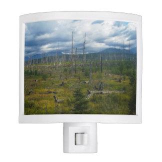 Polebridge Area Burnout Glacier National Park Night Light