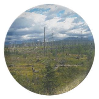 Polebridge Area Burnout Glacier National Park Plate
