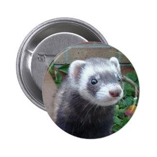 Polecat ferret 2 inch round button
