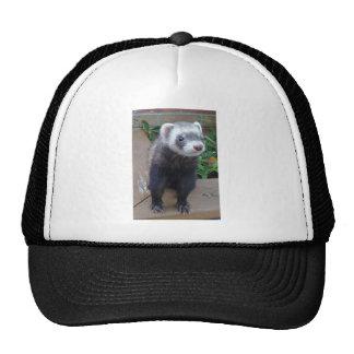 Polecat ferret trucker hat