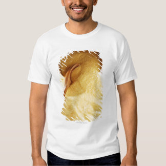 Polenta with wooden spoon and bowl t shirt