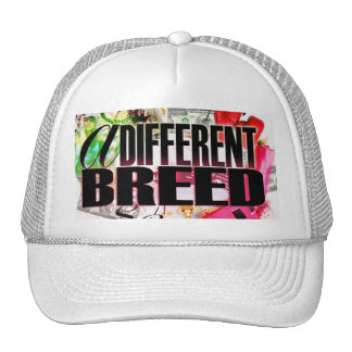 "POLI$HED- ""DIFFERENT BREED"" bball-hat"