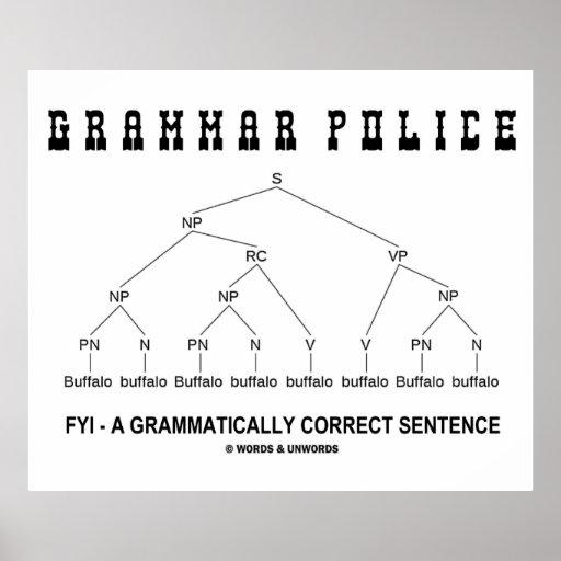Policía de la gramática (el búfalo 8 veces corrige poster