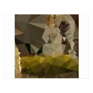 Polígono bajo Backgroun de la selva del extracto Tarjetas Postales