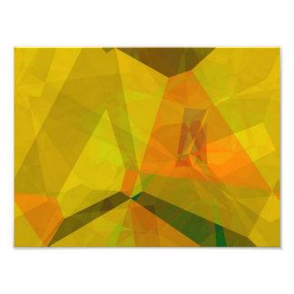 Polígonos abstractos 176 cojinete