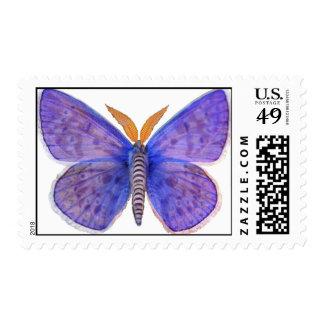 Polilla azul de la mariposa estampilla