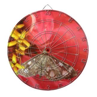 Polilla bonita en tablero de dardo rojo de la flor