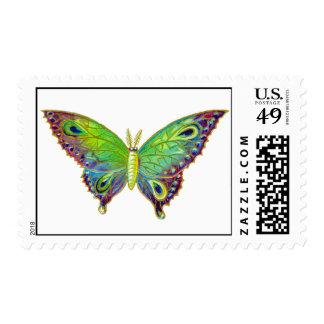 Polilla colorida del vintage sello postal