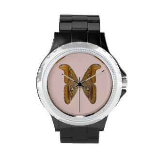 Polilla de atlas reloj