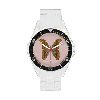Polilla de atlas reloj de mano