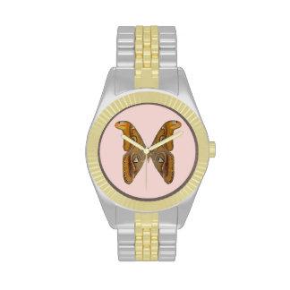 Polilla de atlas relojes