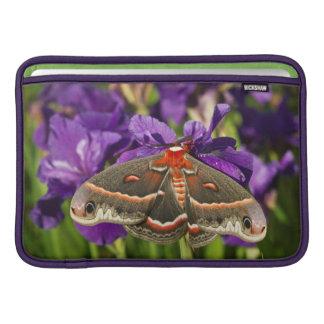 Polilla de Cecropia en jardín de flores Fundas Para Macbook Air