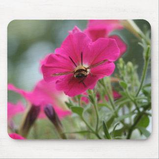 Polilla de colibrí de Clearwing Mousepad
