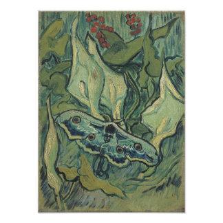 Polilla de emperador de Vincent van Gogh Fotografía