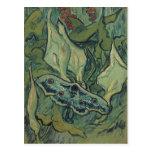 Polilla de emperador de Vincent van Gogh Postal