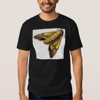 Polilla de halcón de la cabeza de muerte camisas