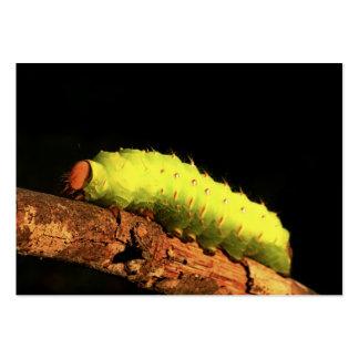 Polilla de Luna Caterpillar Plantillas De Tarjeta De Negocio