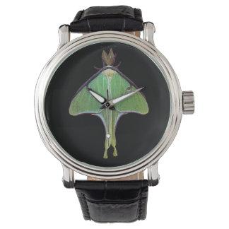 Polilla de Luna Reloj