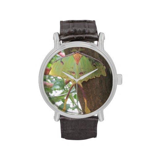 Polilla de Luna Reloj De Mano