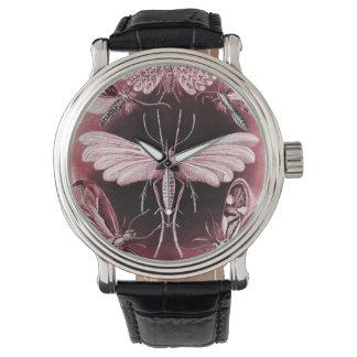 Polilla de Tineida en fondo negro Relojes De Mano