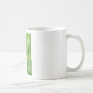 polilla del vapourer (oruga) taza básica blanca