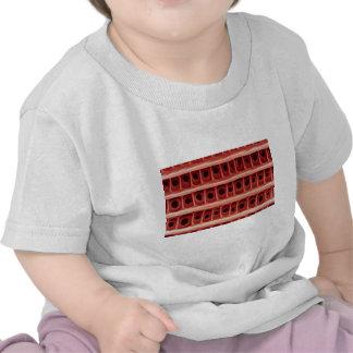 Polilla - escala del ala camisetas