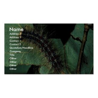 Polilla gitana Caterpillar Tarjeta De Visita