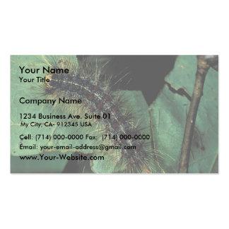 Polilla gitana Caterpillar Tarjetas De Visita