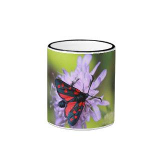 Polilla hermosa taza a dos colores