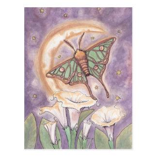 Polilla y Moonflowers Tarjetas Postales