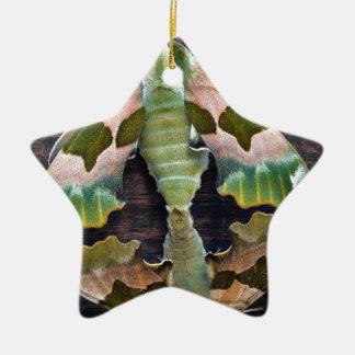 Polillas de halcón de la cal ornamento para arbol de navidad