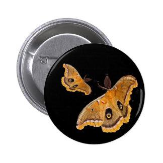 Polillas de Polyphemus Pin Redondo 5 Cm