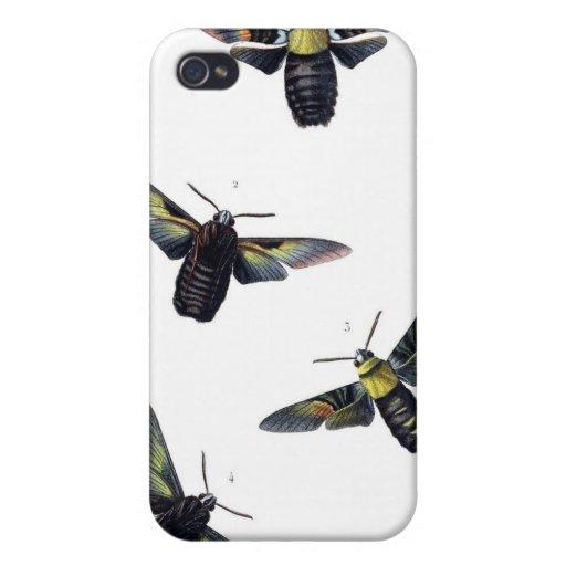 Polillas del Victorian iPhone 4/4S Carcasas