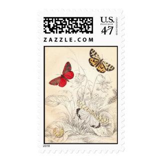 Polillas y mariposas sello postal