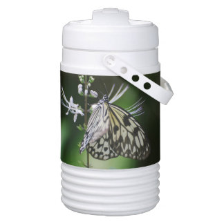 Polinating White and Black Butterfly Igloo Beverage Cooler