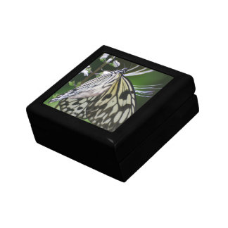 Polinating White and Black Butterfly Jewelry Box