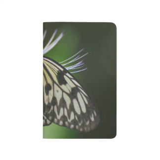 Polinating White and Black Butterfly Journal