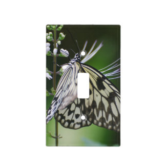 Polinating White and Black Butterfly Light Switch Covers