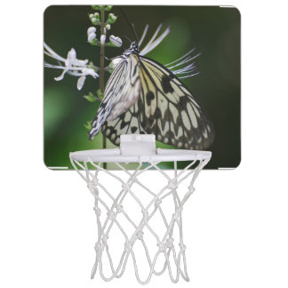 Polinating White and Black Butterfly Mini Basketball Backboards
