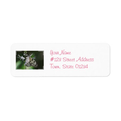 Polinating White and Black Butterfly Return Address Label