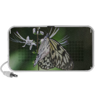 Polinating White and Black Butterfly Travel Speakers