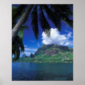 Polinesia francesa, Moorea. Bahía de los cocineros Posters