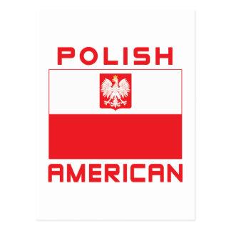 Polish American Flag Postcard