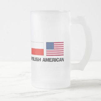 Polish American Frosted Glass Beer Mug