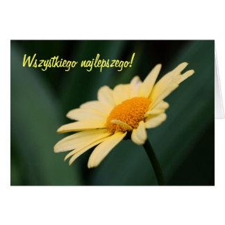 Polish Birthday Card Sto Lat Daisy Flower Photo