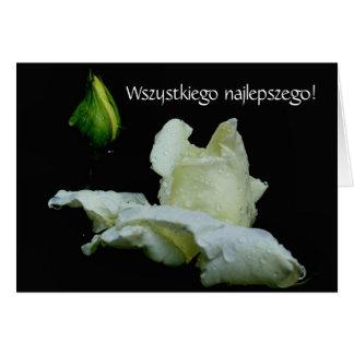 Polish Birthday Card Sto Lat White Rosebud
