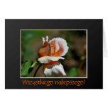 Polish Birthday Sto Lat Rosebud Floral Card