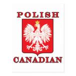 Polish Canadian Eagle Shield Post Card