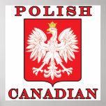 Polish Canadian Eagle Shield Poster