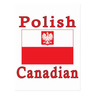 Polish Canadian Falcon Flag Postcard